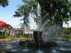 Фонтан Сноп у дворца Монплезир - Петергоф нижний парк